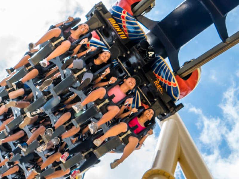 (c) Busch Gardens